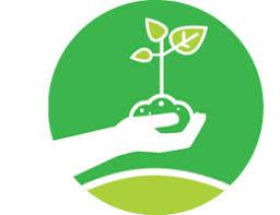 Захист і карантин рослин