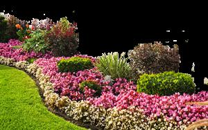 Флористика з садовим мистецтвом